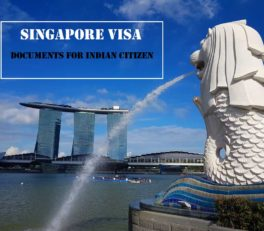 singapore visa for indian citizen